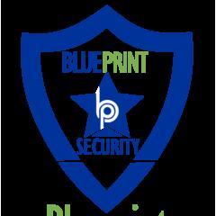 Blueprint Associates